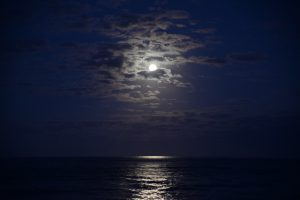 Cape Cod Images - Moon Rise